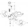ProMax Garden Automatic 6000/5