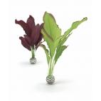 biOrb rostliny střední zelená a fialová