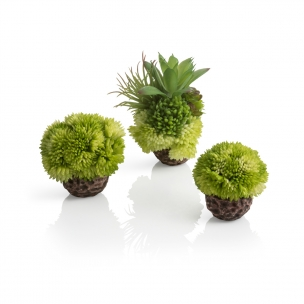 biOrb coral ball set green