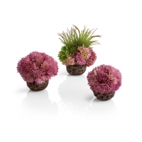 biOrb coral ball set purple