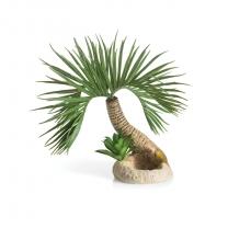 biOrb palma Seychely, malá